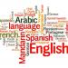母語と母国語の違い